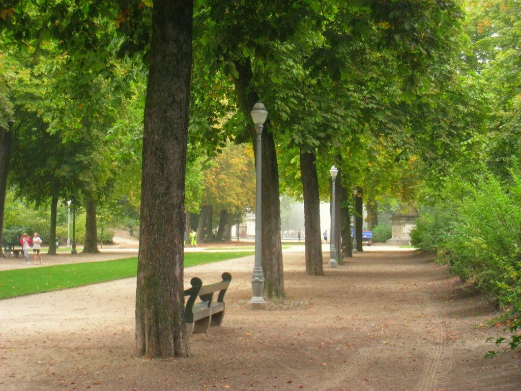 Vegetação no Parque do Cinquentenário em Bruxelas