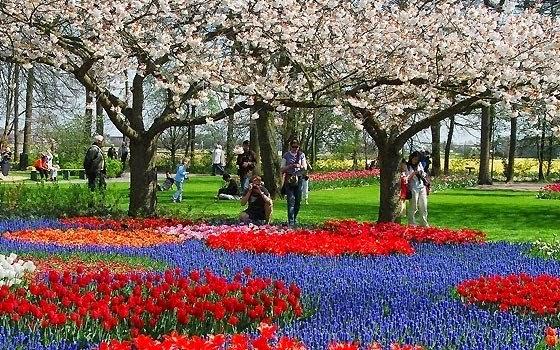 Jardim Keukenhof de Amsterdam | Holanda