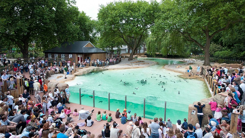 Zoológico London Zoo em Londres | Inglaterra