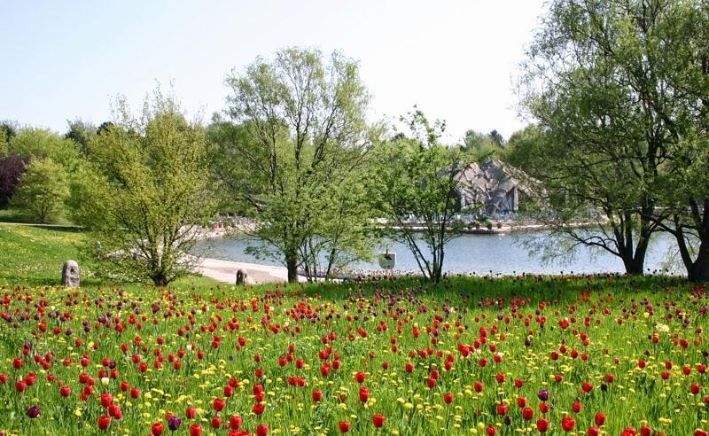 Jardim e lago no Parque Britzer Garten em Berlim