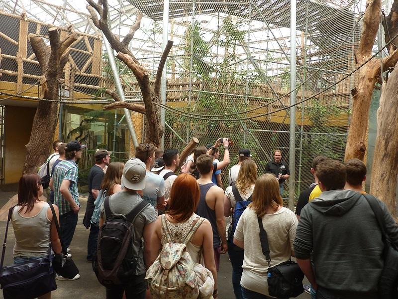Pessoas no Jardim Zoológico de Berlim na Alemanha