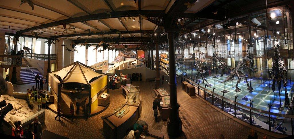 Interior do Museu de Ciências Naturais de Bruxelas