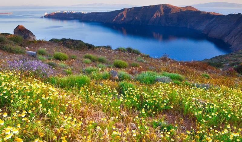 Primavera em Santorini