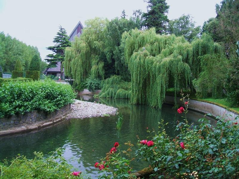 Lago do Jardim Botânico de Dublin