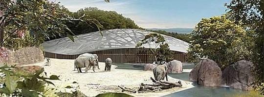 Zoologischer Garten em Zurique